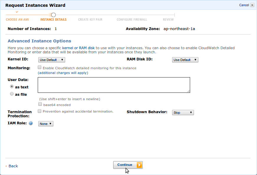 amazon_ec2_launch_instance_instance_details_2